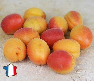 Abricot du Roussillon à mûrir