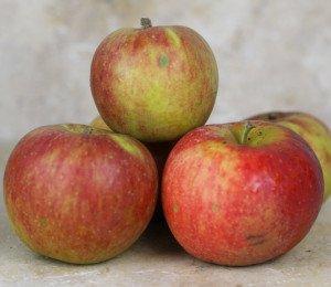 Mix de Pommes d'Antan (2kg)
