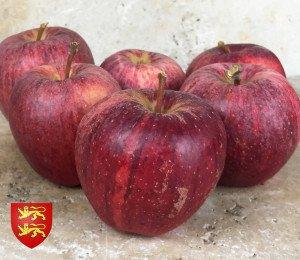 Pomme Royal Gala de Christelle
