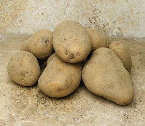 Pomme de terre DITTA BIO (purée, potage, four)