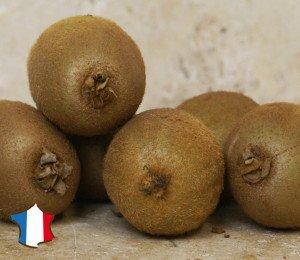 Kiwi vert d'Occitanie